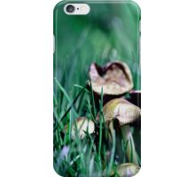 Fairy's World 1 iPhone Case/Skin