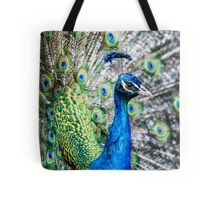 Resident Peacock Tote Bag