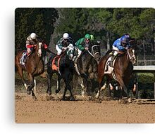 Thoroughbreds 2 Canvas Print