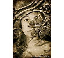 Wood Nymph 2015 Photographic Print