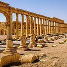 Palmyra More Collonades  by MarcW
