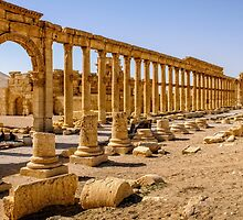 Palmyra More Collonades  by MarcW