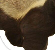 Honey Badger Don't' Care Sticker