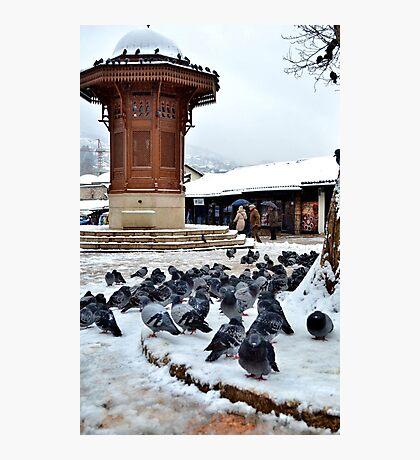 Sebijl Winter Photographic Print