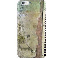 Artful Drain iPhone Case/Skin