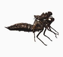 Dragonfly exuviae T-shirts and stickers by Steve Crompton