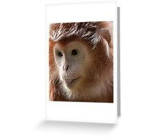 """The ginger primate"" Greeting Card"