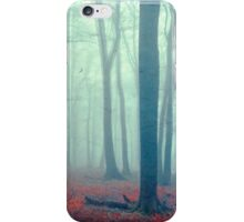 mute forest panorama iPhone Case/Skin