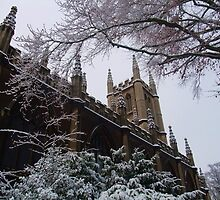 Chilly Church, Bath, UK by MichelleRees