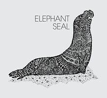Elephant Seal Sketch by Hinterlund