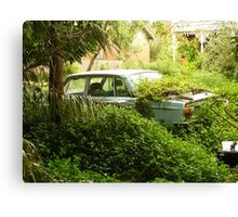 Overgrown Volvo Canvas Print