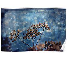 Seasons Greeting Poster
