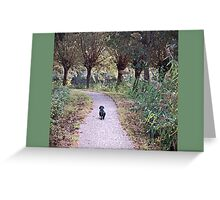 Lone walker Greeting Card