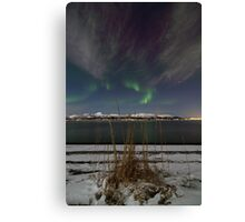 The snowy beach Canvas Print