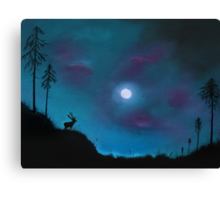Mystery Over Northern Lights Canvas Print