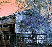 No Ordinary Barn - Color enhanced photo by Betty Northcutt