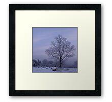 Willow Rolls Framed Print