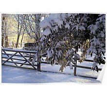 """Warm December Light"" Poster"