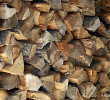 Ready For Winter - Firewood stacked and waiting by Betty Northcutt