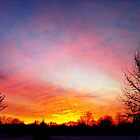 Winter Sunrise by Melonie Wallace