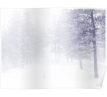 Snow and Fog Poster