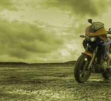 TDM 850 by Rob Hawkins