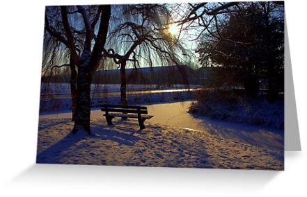Winter Sun by Jo Nijenhuis