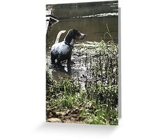Muddy pup Greeting Card