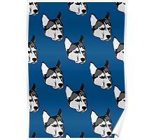 Grumpy Husky Poster