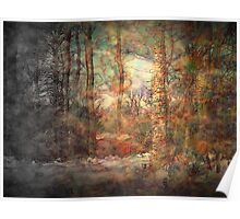 Winter Envisions Spring Poster