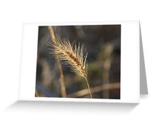 Wild Weed Greeting Card