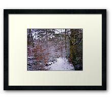 Winter Wonderland, Upton Woods, Poole Framed Print