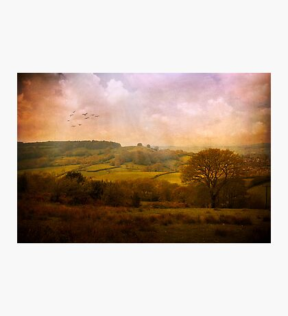 Devonshire Photographic Print
