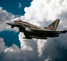 Camouflage Typhoon by J Biggadike