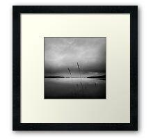 Grasses at Loch Lomond Framed Print