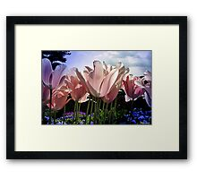 I Can See Right Through You Framed Print