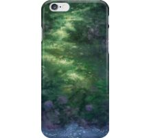 Find Your Center iPhone Case/Skin