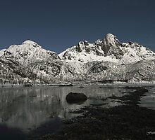 Arctic shore, Vesteralen, north of Norway by Frank Olsen