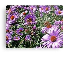 Two Bees on Flowers, Manipulated Metal Print