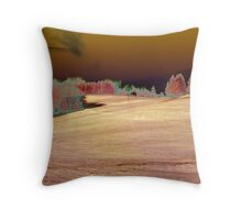 A Not So Typical Winter Day Throw Pillow