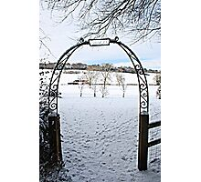 Gate to Narnia Photographic Print