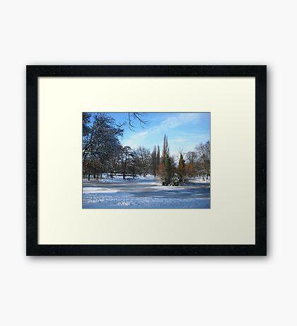 Winter sun Framed Print
