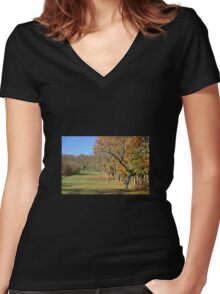 Countryside Women's Fitted V-Neck T-Shirt