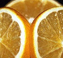 Orange Slices by RebeccaBlackman