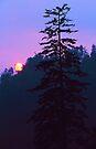 SETTING SUN by Chuck Wickham