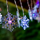 Christmas Snowflakes by photodivaanna
