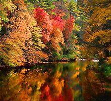 Linville River - Autumns Palette by Karen Peron