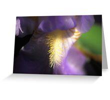 Macro Flower Shot Greeting Card