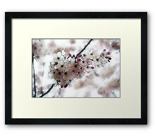 Tired of Winter Framed Print