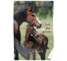 Challenge Winner Banner Poster